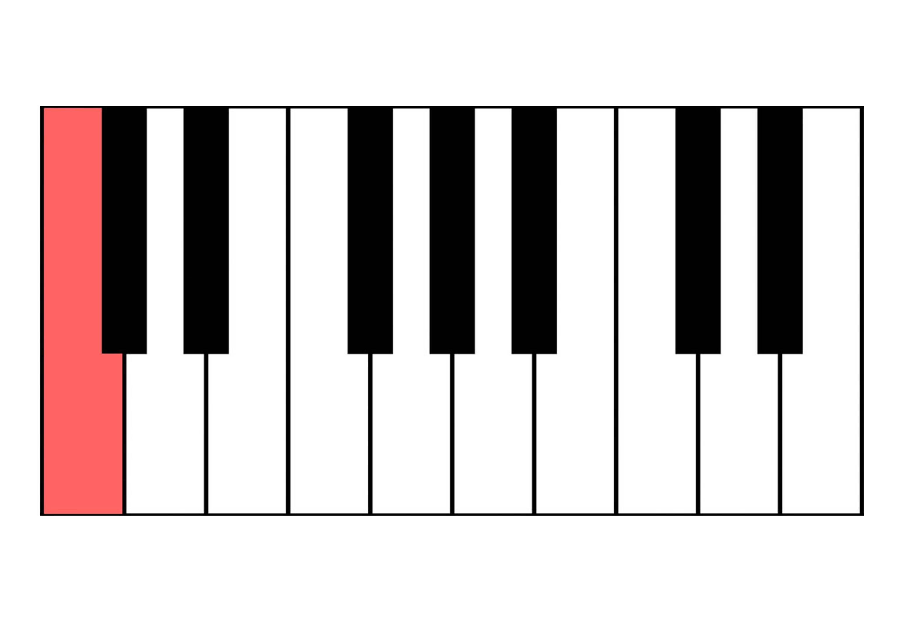 Klaviertastatur - auch für Keyboards!