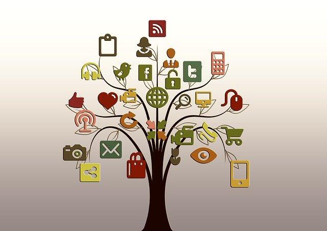 Social Media im Unterricht: Wenn Schüler ihr Lernen mit anderen teilen